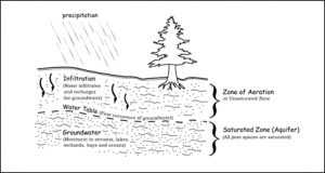 Illustration of the water table, the saturated and unsaturated zones (The Importance of Groundwater, web)
