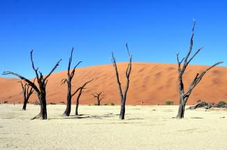 Sossusvlei Namibia by Eric Bauer