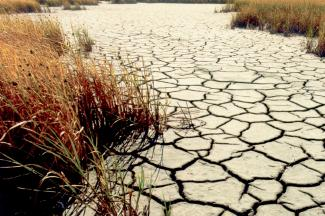 Groundwater & Climate Change