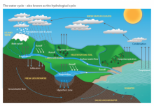 The Water Module: Poster - Water cycle