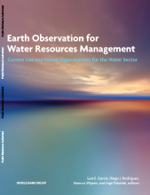 Earth Observation for Water Resources Management: Current Use and Future Opportunities for the Water Sector